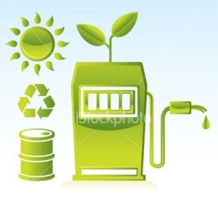 Biofuel Companies in India